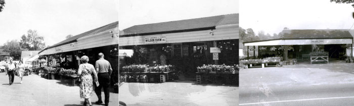 The First Wilson Farm Stand
